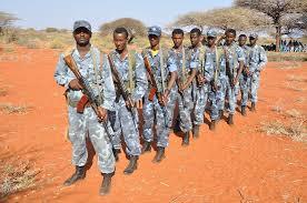 ONLF says Ethiopia killed over forty people village Somali