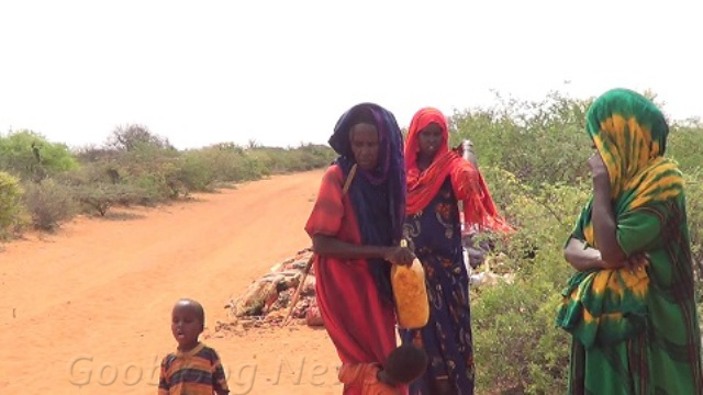 Families who escaped the drought from Mudug region beg on the road in Mahas. November 28, 2016 Photo: Goobjoog News