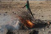 A Turkana tribesman burns goats carcasses in a village near Loiyangalani, Kenya, March 20, 2017. REUTERS/Goran Tomasevic