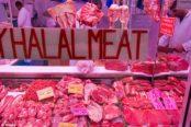 Halal-174x116.jpg