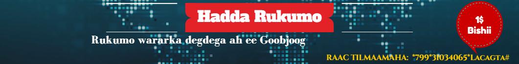 Gobjoog News