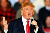 Donald-Trump-445887-174x116.jpg
