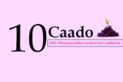 10-caado-174x116.png