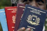 160705141052-mixed-passports-super-169