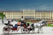 Vienna11-174x116.png