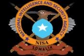 nisa-174x116.png